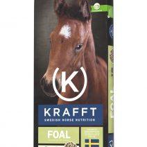 Krafft_foal